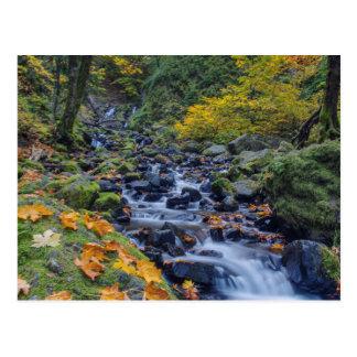 Color del otoño a lo largo de caídas de la cala tarjeta postal