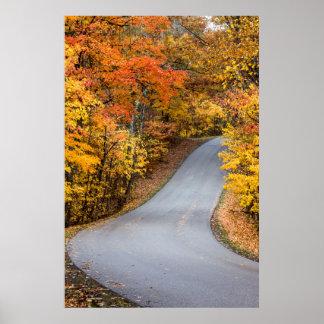 Color del otoño en el parque de estado del condado póster