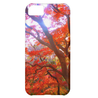 Color del otoño funda para iPhone 5C