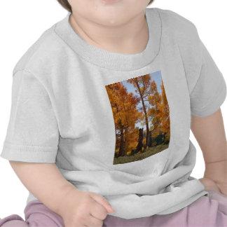 Color del otoño camisetas