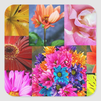 Color Display of flowers Square Sticker