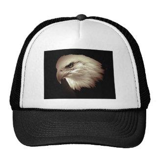 Color Eagle calvo de la sepia Gorro De Camionero
