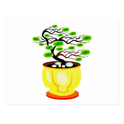 Color enorme del pote de los bonsais azotados por  postal