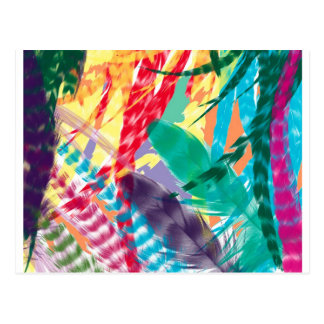 Color Feathers Postcard