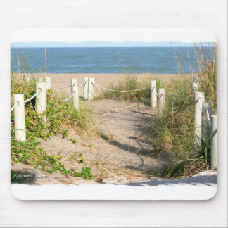 Color Florida Beach Dune Rope Walk Photo Mouse Pad