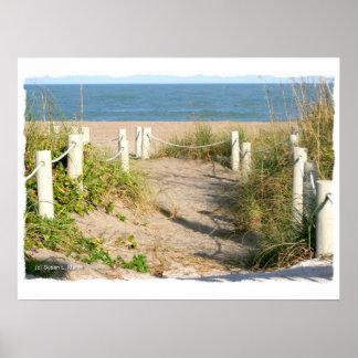 Color Florida Beach Dune Rope Walk Photo Poster