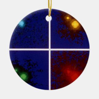 Color Images of Quasar 1208+101Split by Gravitatio Ornaments