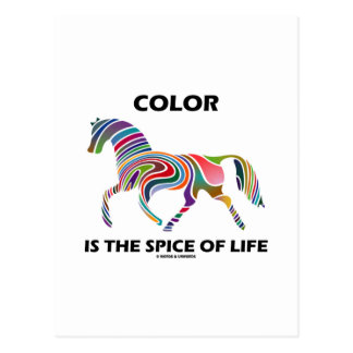 Color Is The Spice Of Life (Horse Color Swirl) Postcard