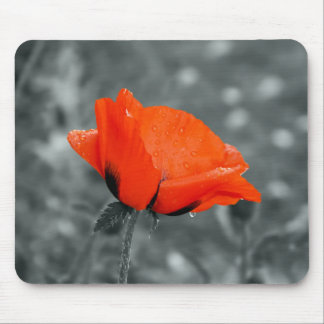 Color key poppy mousepad