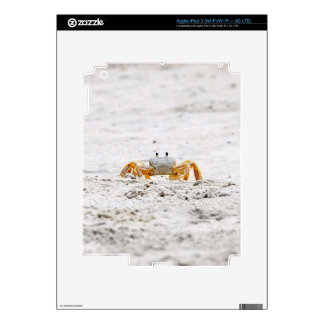 Color Me Cute Crab Electronic Accessories iPad 3 Decal