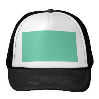 color medium aquamarine trucker hat