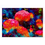 Color Merge 5085 Greeting Card