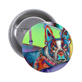 Color My World with Boston Terriers Button