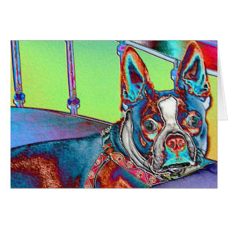 Color My World with Boston Terriers Card