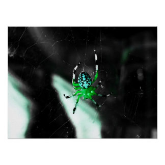 Color on Eight Legs - Green Poster