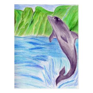 Color pencil dolphin postcard
