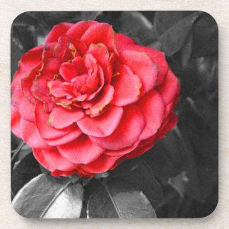 Color pop red rose coaster