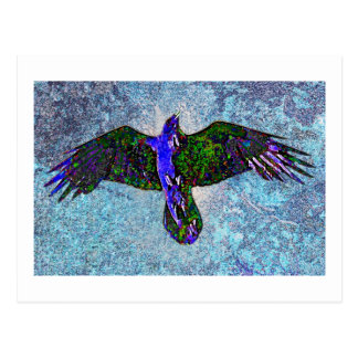 Color Raven On Blue Postcard