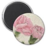 Color rosado de los claveles 3 con sepia imán de frigorifico