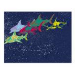 color sharks animal-themed postcard