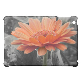 Color Splash iPad Case With Gerbera Daisy