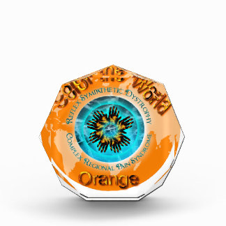 Color the World Orange - CRPS Dual Ice Circlet.png Award