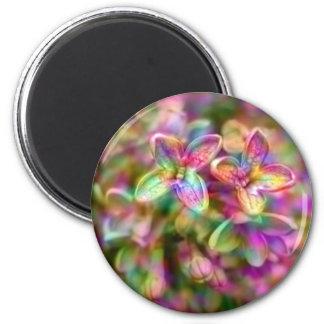Color up my life fridge magnet