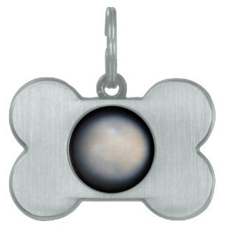 Color View of Ceres Pet Tag
