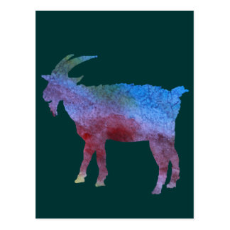 Color Washed Goats Postcard