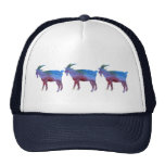 Color Washed Goats Trucker Hat