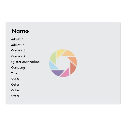 Color Wheel - Chubby Large Business Cards (Pack Of 100)