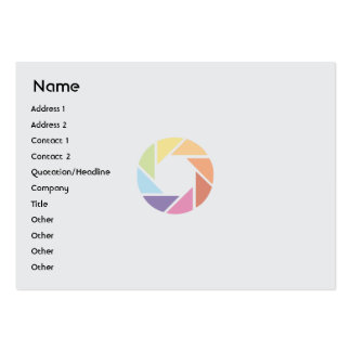 Color Wheel - Chubby Large Business Card