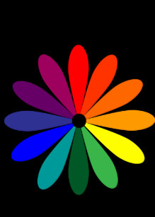 Color Wheel Flower Gifts On Zazzle