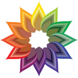 Color Wheel Flower Postcard