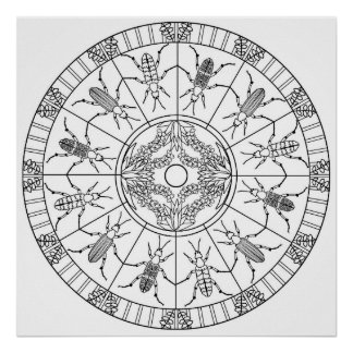 Color Yourself Mandala Poster Blister Beetle Bugs