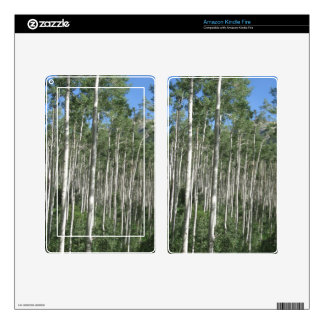 Colorado Aspen Trees Skin For Kindle Fire