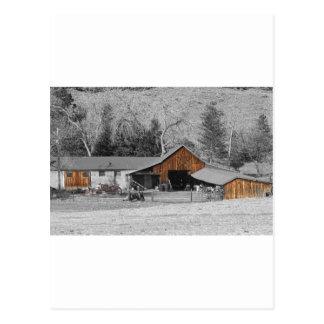 Colorado Barn Boulder County Postcard