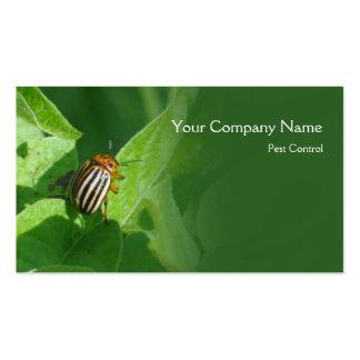 Colorado beetle business card