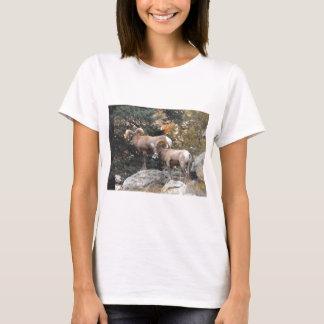 Colorado Bighorns T-Shirt
