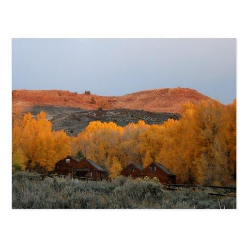 Colorado Blue Mesa Cabins in Sunrise Glow Postcard