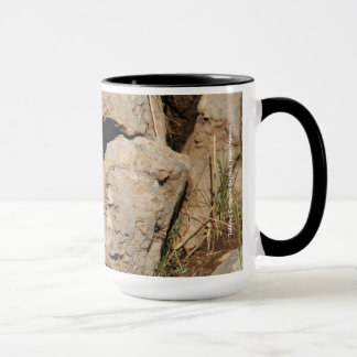Colorado Chipmunk Mug