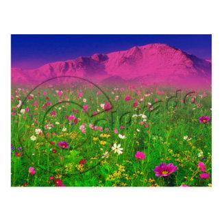 Colorado colorido, montaña máxima de los lucios tarjetas postales
