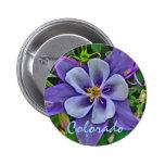 Colorado columbine button