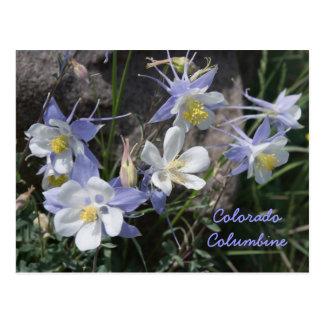 Colorado Columbine Postal