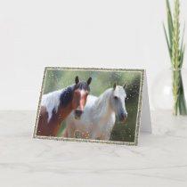Colorado Country Christmas Horse card