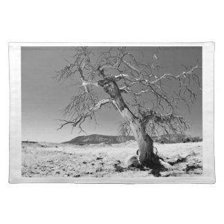 Colorado Desert Scene Place Mat