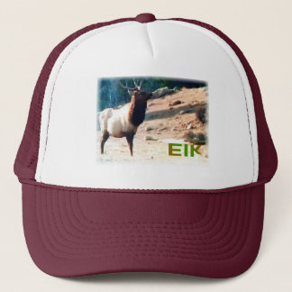 Colorado Elk cap