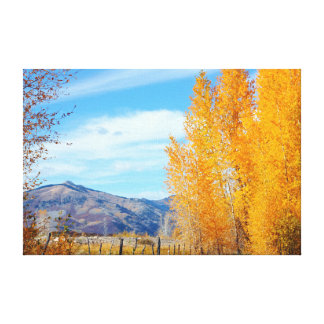 Colorado Fall Vista Wrapped Canvas