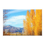 Colorado Fall Vista Wrapped Canvas Canvas Print