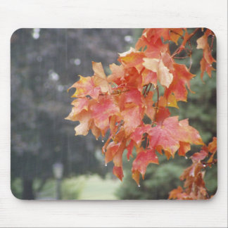 Colorado Fall Weather Red Leaves & Rain Mousepad